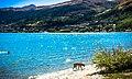 Lake Wakatipu Peace Park, Queenstown, New Zealand - panoramio (2).jpg