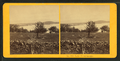 Lake Winnipeseogee, from Robert N. Dennis collection of stereoscopic views 2.png