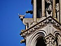 Laon Cathédrale Notre-Dame Fassade Turmdetails 2.jpg