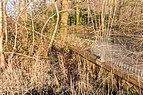 Lekkende houten damwand. Locatie, Natuurterrein De Famberhorst 02.jpg