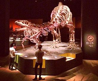 Lessemsaurus - Exhibit in Singapore