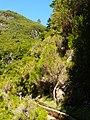 Levada 25 Fontes, Madeira, Portugal, June-July 2011 - panoramio (36).jpg