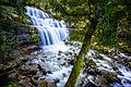 Liffey Falls II (9753401394).jpg