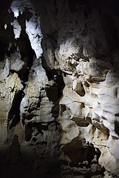 Waitomo Caves Wikipedia