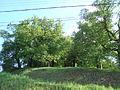 Lipové stromořadí v Rosicích2.JPG
