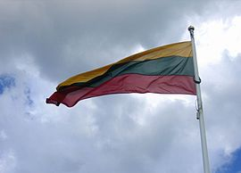 Lithuanian flag waving in the wind.jpg