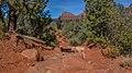 Llama Trail (40025887111).jpg