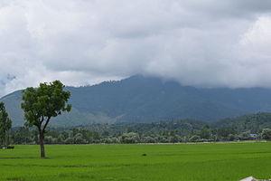 Lolab Valley - Lolab Valley