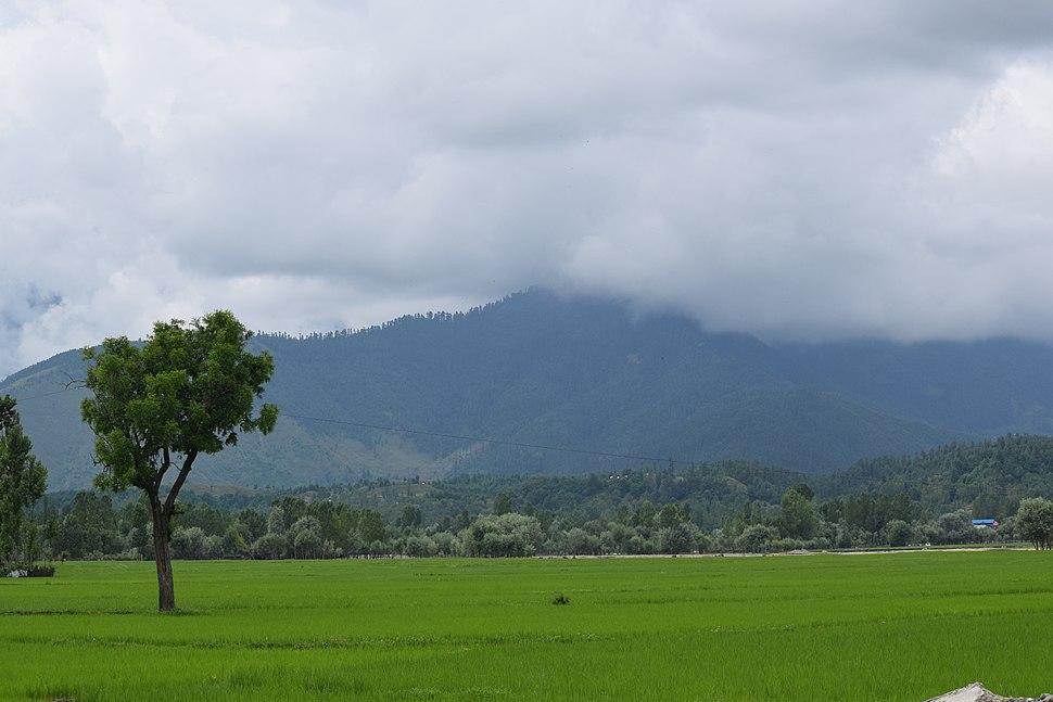 Lolab Valley-Kupwara
