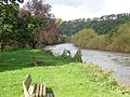 Looking down the River Wye - geograph.org.uk - 1018090.jpg