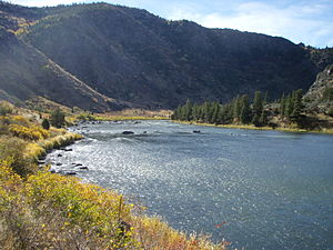 Madison River - Lower Madison River In Bear Trap Canyon Below Ennis, Montana