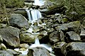 Lower Shannon Falls01.jpg