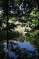 Lueneburg IMGP9703 wp.jpg
