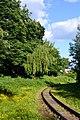 Lutsk Volynska-Volyn botanic garden-near the children's railway-2.jpg