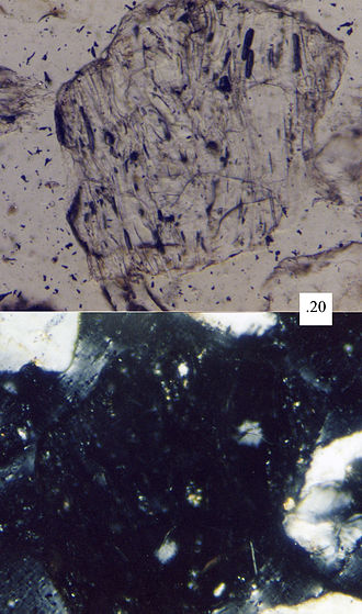 Extinction (optical mineralogy) - A sand grain of volcanic glass under the petrographic microscope. Its amorphous nature makes it go extinct in cross-polarized light (bottom frame), and thus does not have an extinction angle. Scale box in millimeters.
