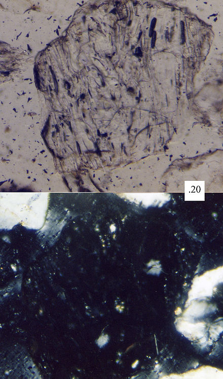 An aphanitic volcanic sand grain, with fine-grained groundmass, as seen under a petrographic microscope LvMS-Lvv.jpg