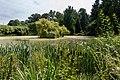 Münster, Botanischer Garten -- 2016 -- 3869.jpg