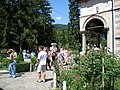 Mănăstirea Cozia-VL-II-a-A-09697 (40).JPG