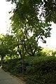 MADRID A.V.U. JARDIN PLAZA PEÑUELAS - panoramio (2).jpg