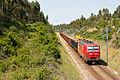 Madeira, Bombel, 2011.04.26.jpg