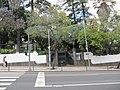Madeira em Abril de 2011 IMG 1821 (5664251612).jpg