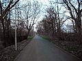 Malchow Hohenschönhauser Weg 01.jpg