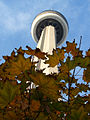 Maple leave and the CN Tower.jpg