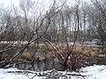 Maplewood - panoramio.jpg
