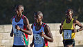 Marathon de Toulouse 2014 - 3066.jpg