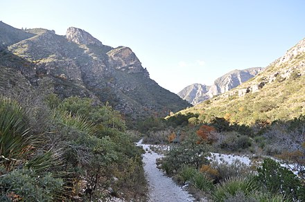 Guadalupe Mountains National Park McKittrick Canyon Trail.JPG