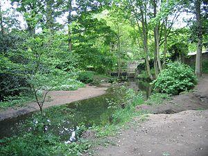 Meanwood Beck - Meanwood Beck in Meanwood Park