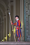 Member of the Swiss Guard.jpg