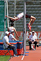 Men high jump French Athletics Championships 2013 t153119.jpg