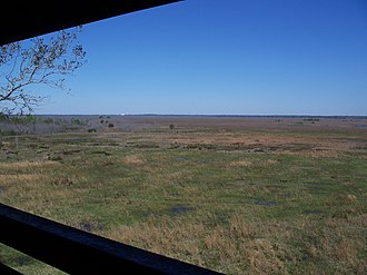 Florida State Parks in Alachua County - Looking north from the observation tower at Payne's Prairie.