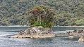 Milford Sound, South Island (483083) (9485284808).jpg