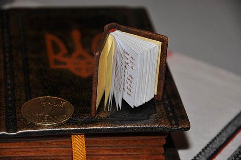 Мініатюрна конституція України - Wikiwand