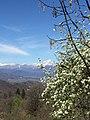Monviso - panoramio (3).jpg