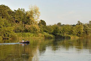 Morava (river) River in Central Europe