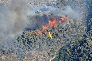 Mount Carmel National Park - A fire in December 2010