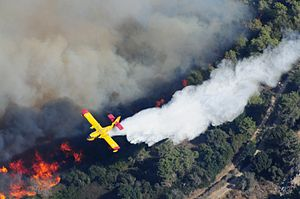 Mount Carmel Forest Fire (2010) - Aerial firefighting