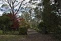 Mount Wilson NSW 2786, Australia - panoramio (24).jpg