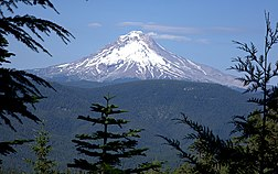 View of Mount Hood from the West