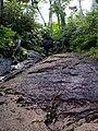 Mt.Kinposan (Kinpohsan) 20130707-P7070074 (9253848221).jpg