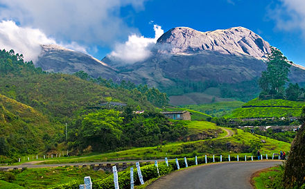 Kerala, nicknamed as &quotGod's own country&quot, has a reputation of being one of the most beautiful states in India. Shown here is Munnar, in Kerala. - Tourism in Kerala