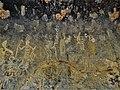 Muro izquierdo de las pinturas rupestres del Tepozán 21.jpg