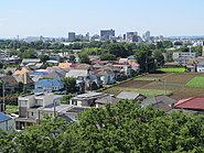 Musashino in the afternoon