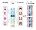 MutationTypes v3.jpg