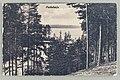 Näkölinja Palovartijan mäki–Huosiaissaari–Pöllänselkä–Vaahersalo, 1910s–1920s PK0380.jpg
