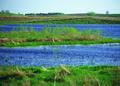 NRCSSD01021 - South Dakota (6061)(NRCS Photo Gallery).tif