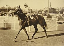 NUFFIELD 1938 AJC SIRES PRODUCE STAKES HAROLD BADGER.jpg